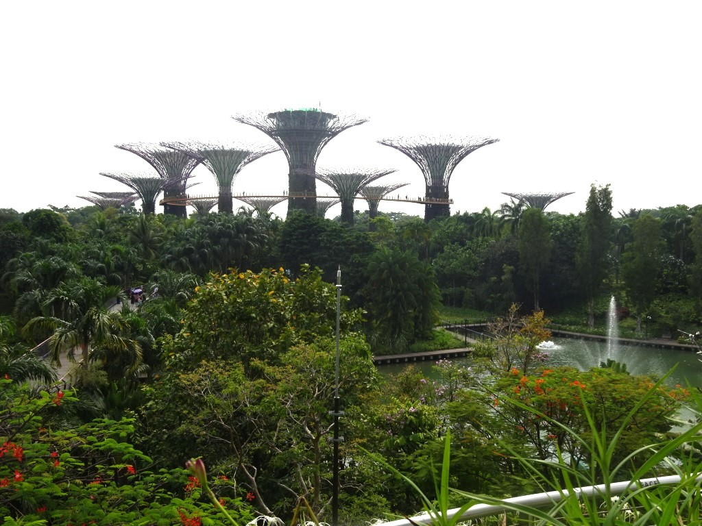 DSC04160 Gardens By the Bay Supertrees